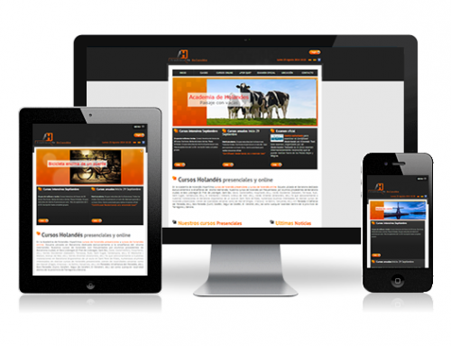 Diseño web responsive – Academia de holandés