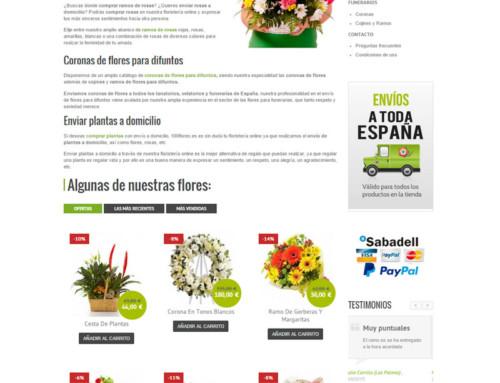 Diseño de tienda online 100 Flores